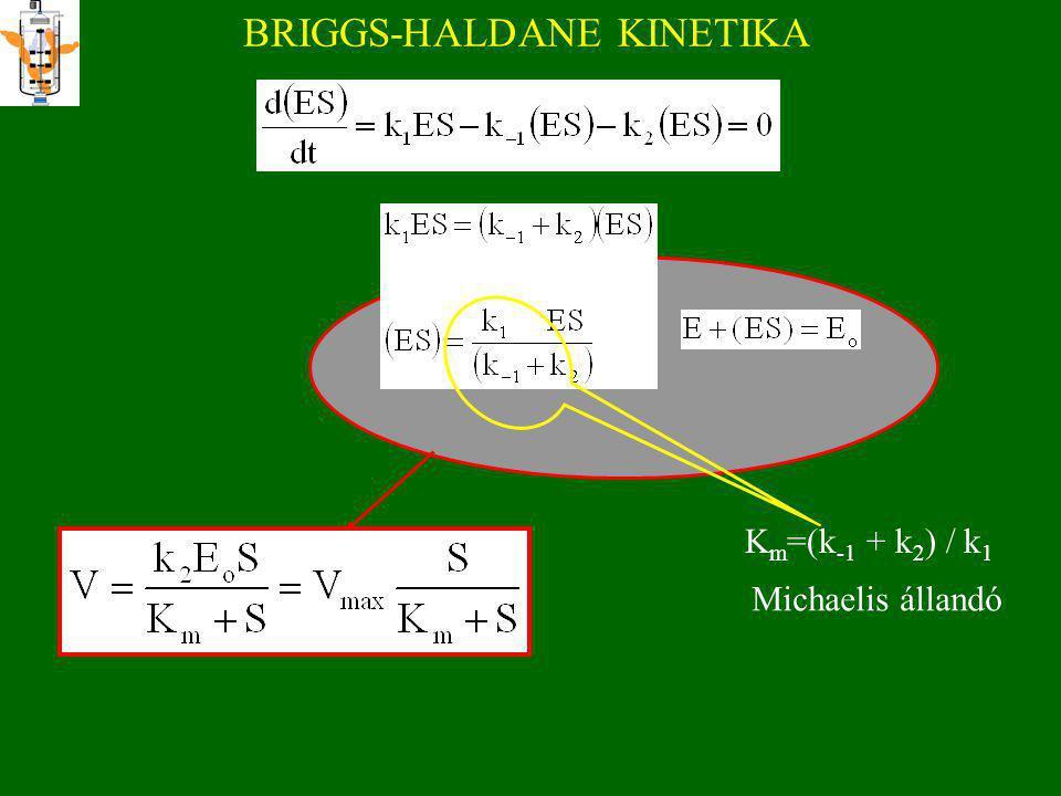 BRIGGS-HALDANE KINETIKA