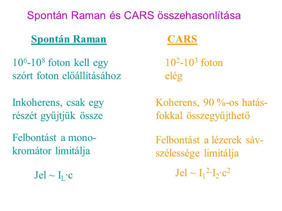 Spontán Raman és CARS összehasonlítása
