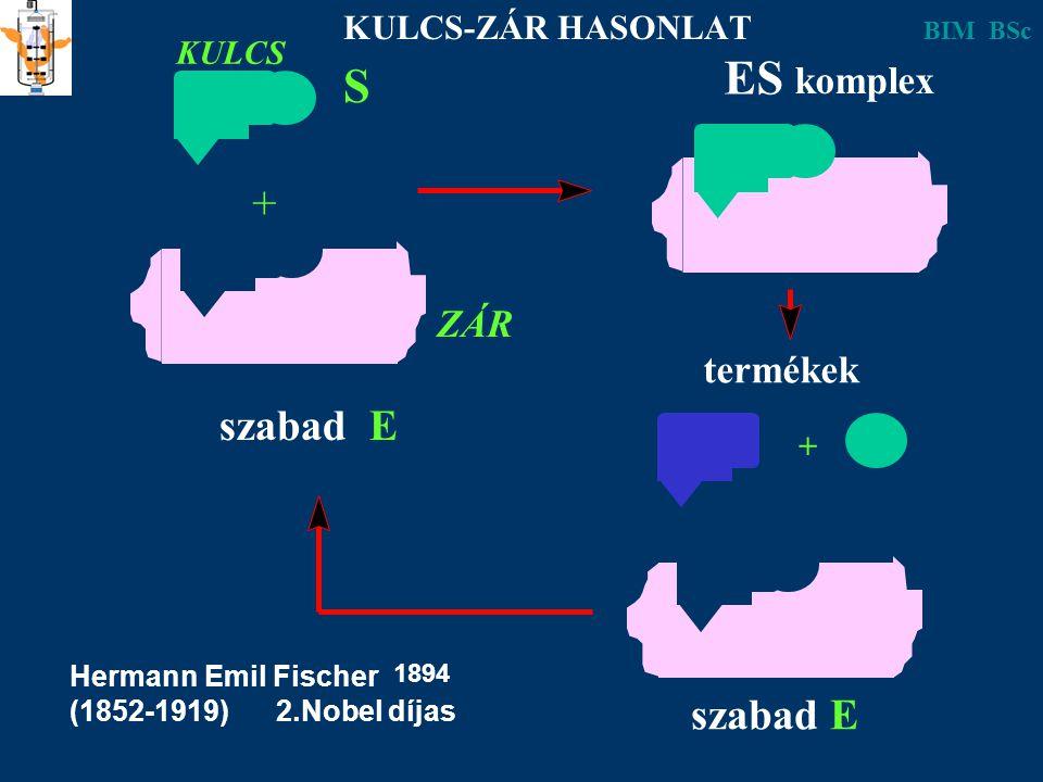 ES S + szabad E szabad E komplex ZÁR termékek KULCS-ZÁR HASONLAT KULCS