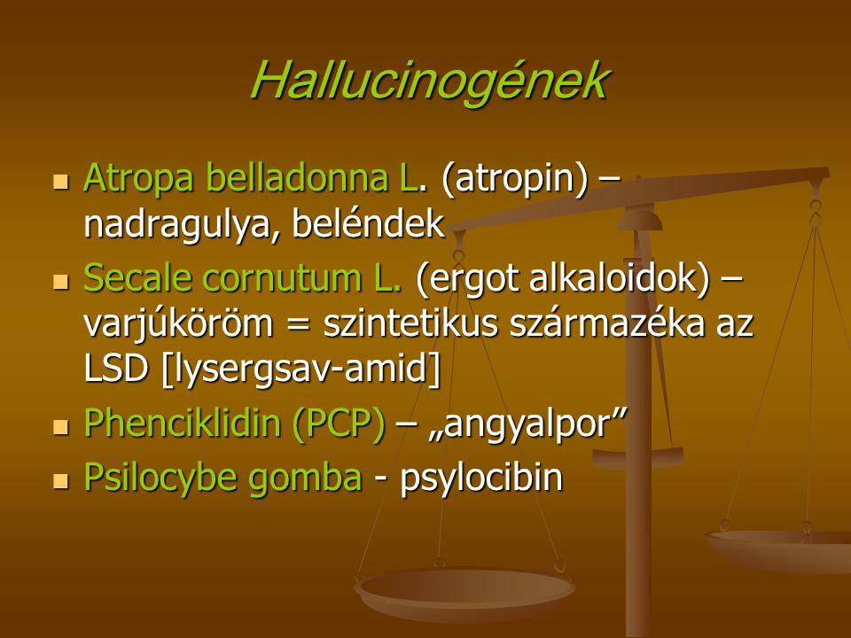 Hallucinogének Atropa belladonna L. (atropin) – nadragulya, beléndek