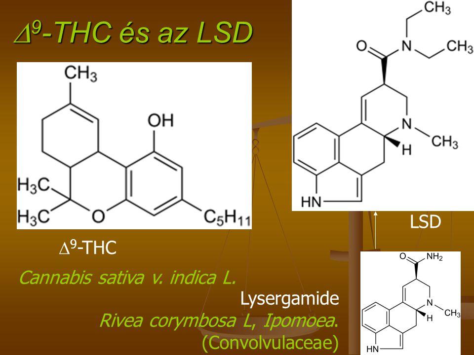 D9-THC és az LSD LSD D9-THC Cannabis sativa v. indica L. Lysergamide
