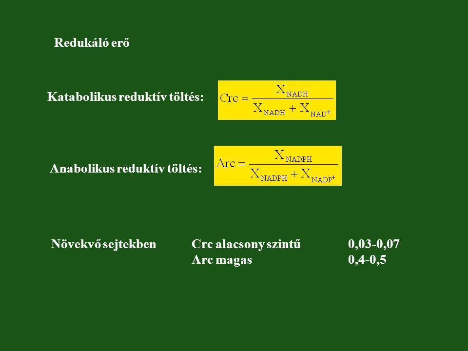 Redukáló erő Katabolikus reduktív töltés: Anabolikus reduktív töltés: Növekvő sejtekben Crc alacsony szintű 0,03-0,07.