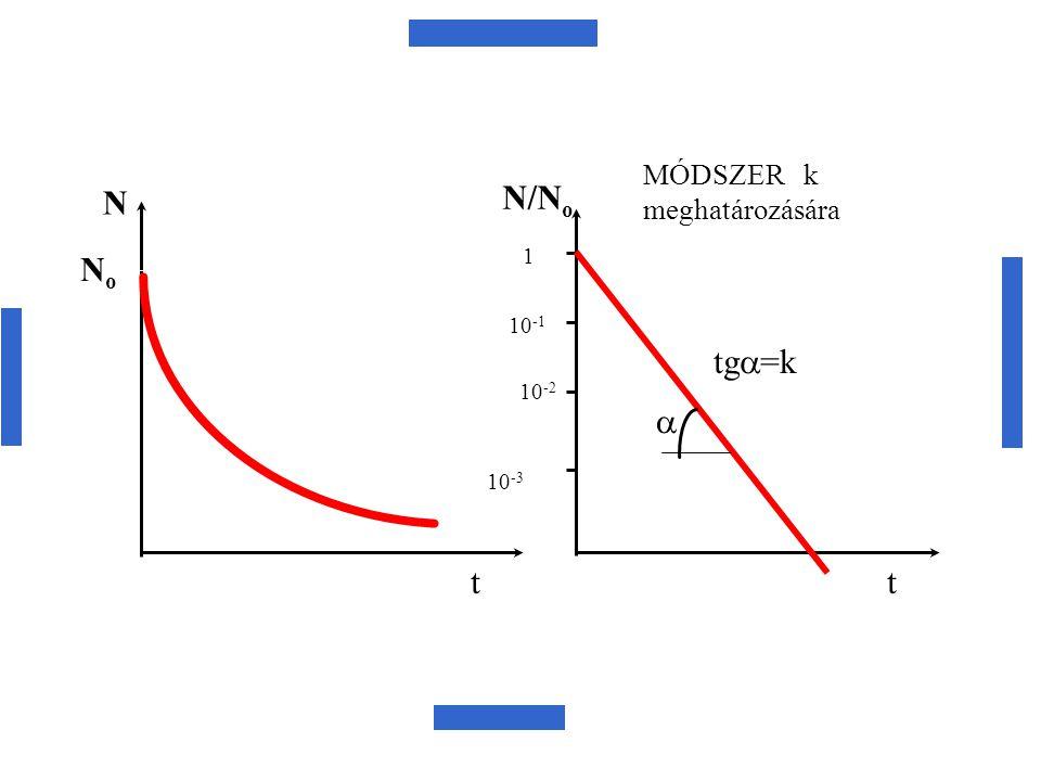 No N t N/No 1 10-1 10-2 10-3 a tga=k MÓDSZER k meghatározására