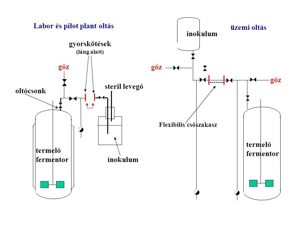 Labor és pilot plant oltás üzemi oltás