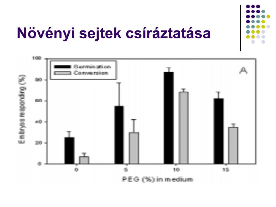 Növényi sejtek csíráztatása