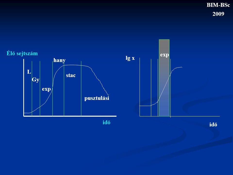 BIM-BSc 2009 exp lg x idő Élő sejtszám L Gy exp hany stac pusztulási idő