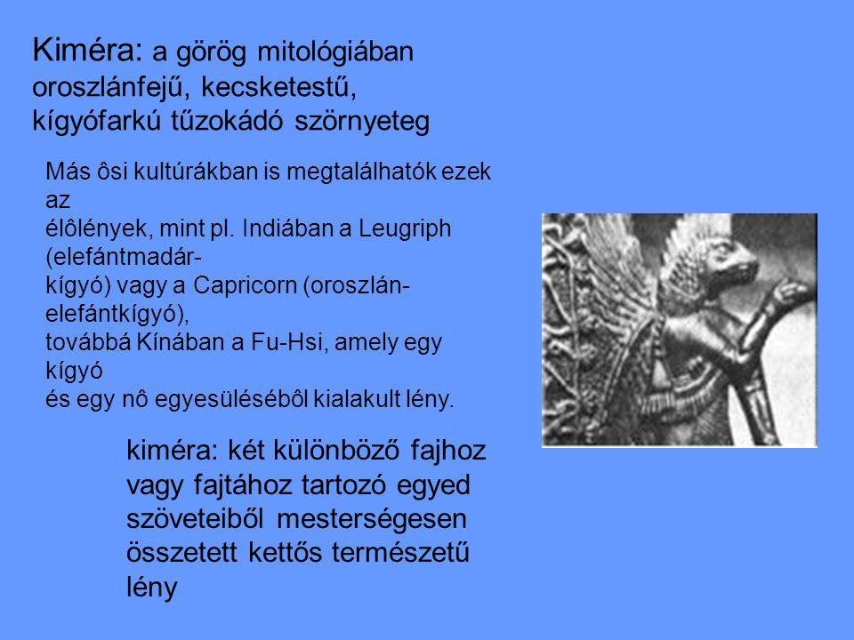 Kiméra: a görög mitológiában oroszlánfejű, kecsketestű, kígyófarkú tűzokádó szörnyeteg