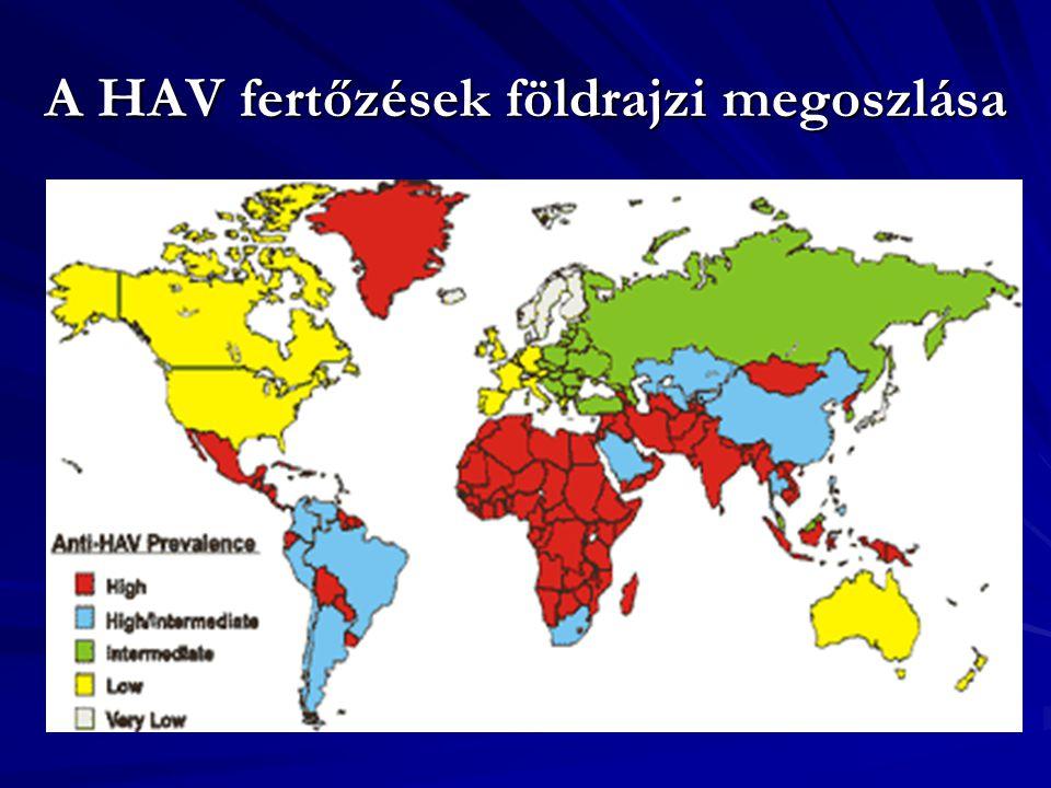 A HAV fertőzések földrajzi megoszlása