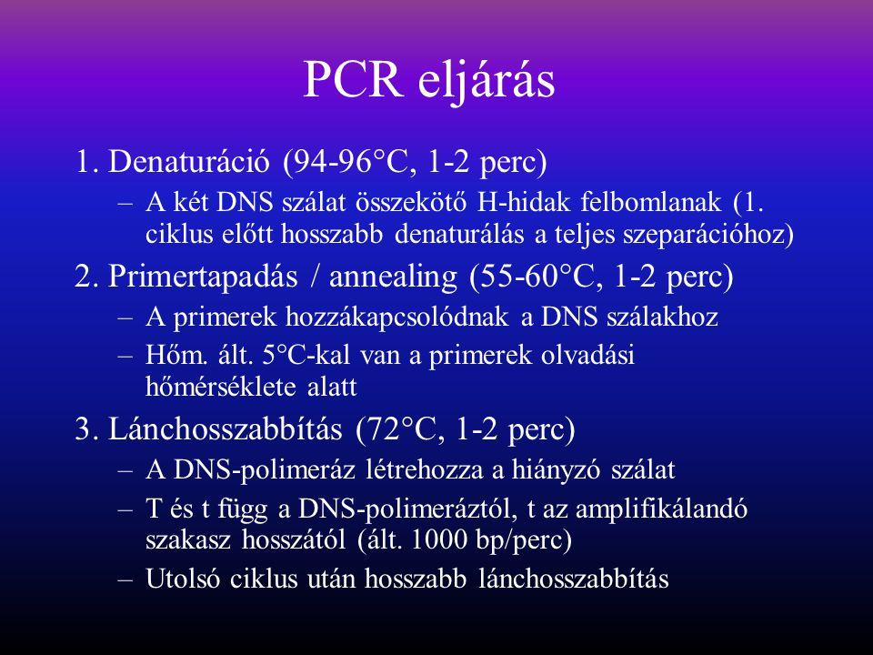 PCR eljárás 1. Denaturáció (94-96°C, 1-2 perc)
