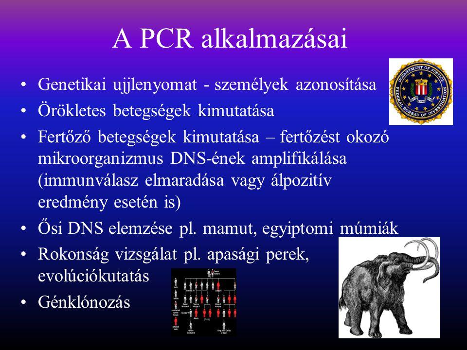 A PCR alkalmazásai Genetikai ujjlenyomat - személyek azonosítása