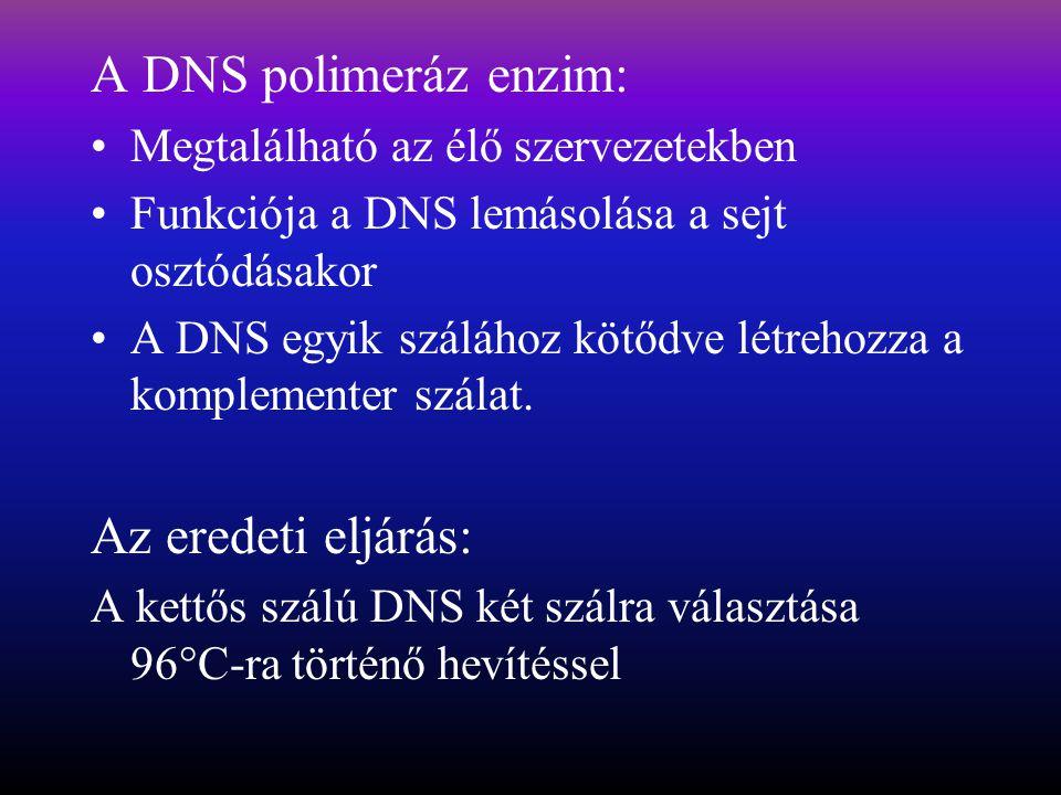 A DNS polimeráz enzim: Az eredeti eljárás: