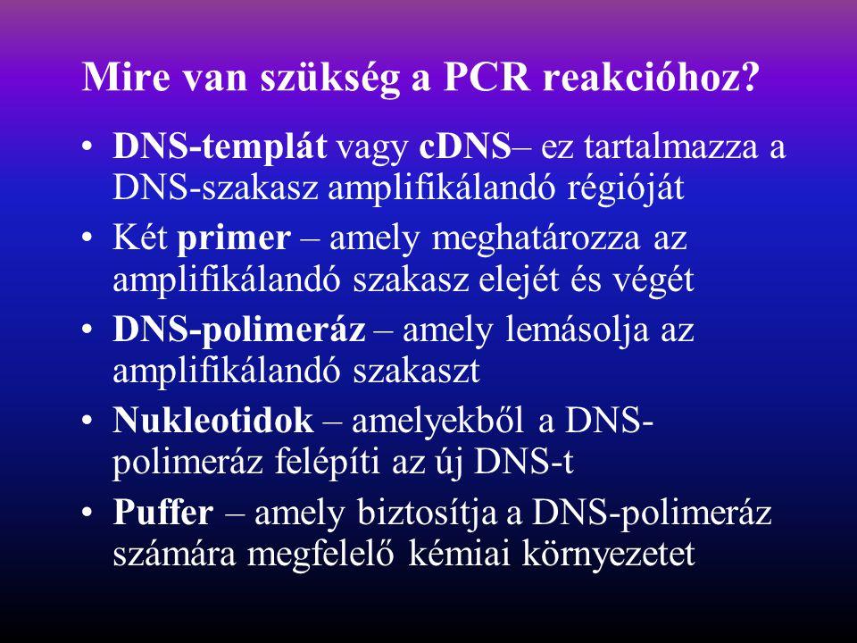 Mire van szükség a PCR reakcióhoz