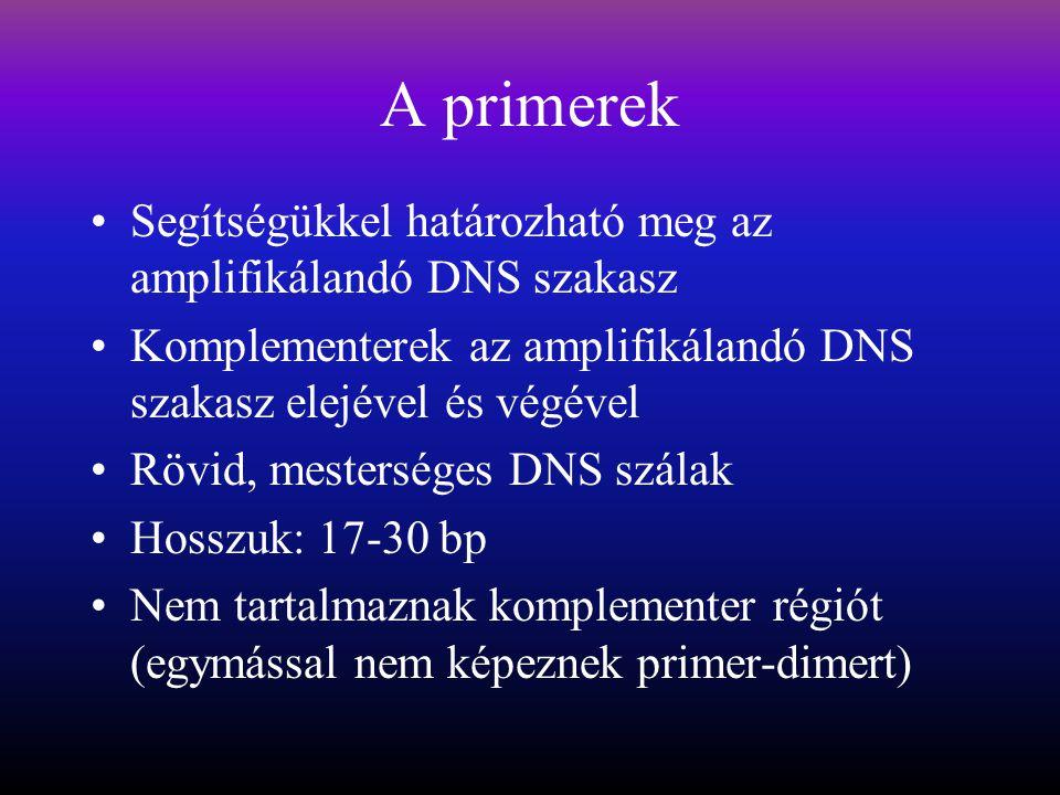 A primerek Segítségükkel határozható meg az amplifikálandó DNS szakasz