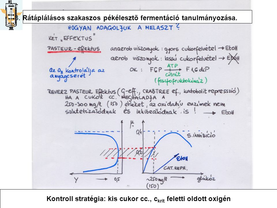 Kontroll stratégia: kis cukor cc., ckrit feletti oldott oxigén