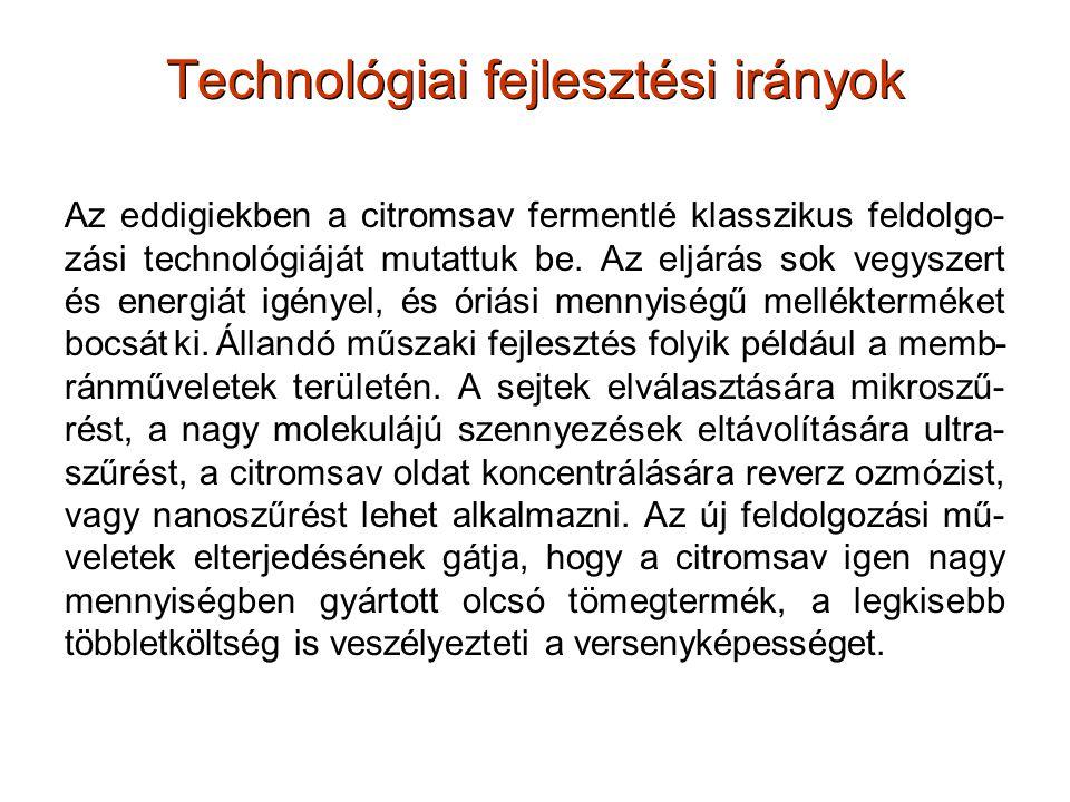 Technológiai fejlesztési irányok