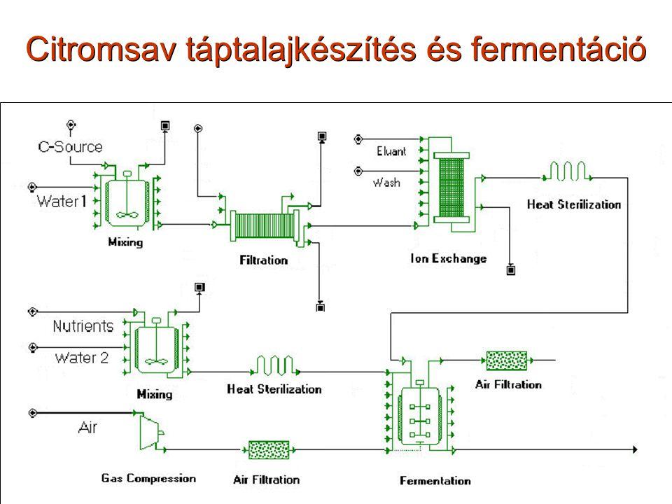 Citromsav táptalajkészítés és fermentáció
