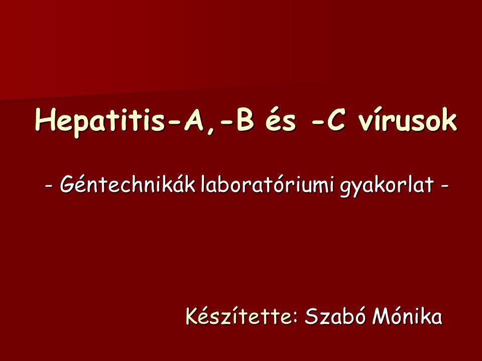 Hepatitis-A,-B és -C vírusok