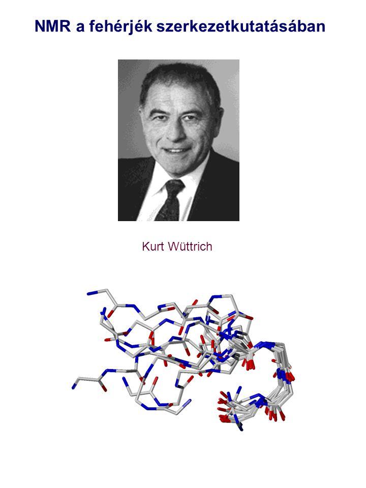 NMR a fehérjék szerkezetkutatásában