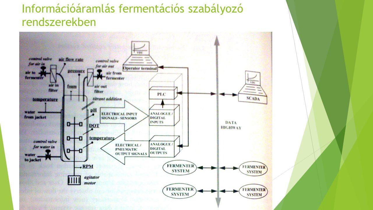 Információáramlás fermentációs szabályozó rendszerekben