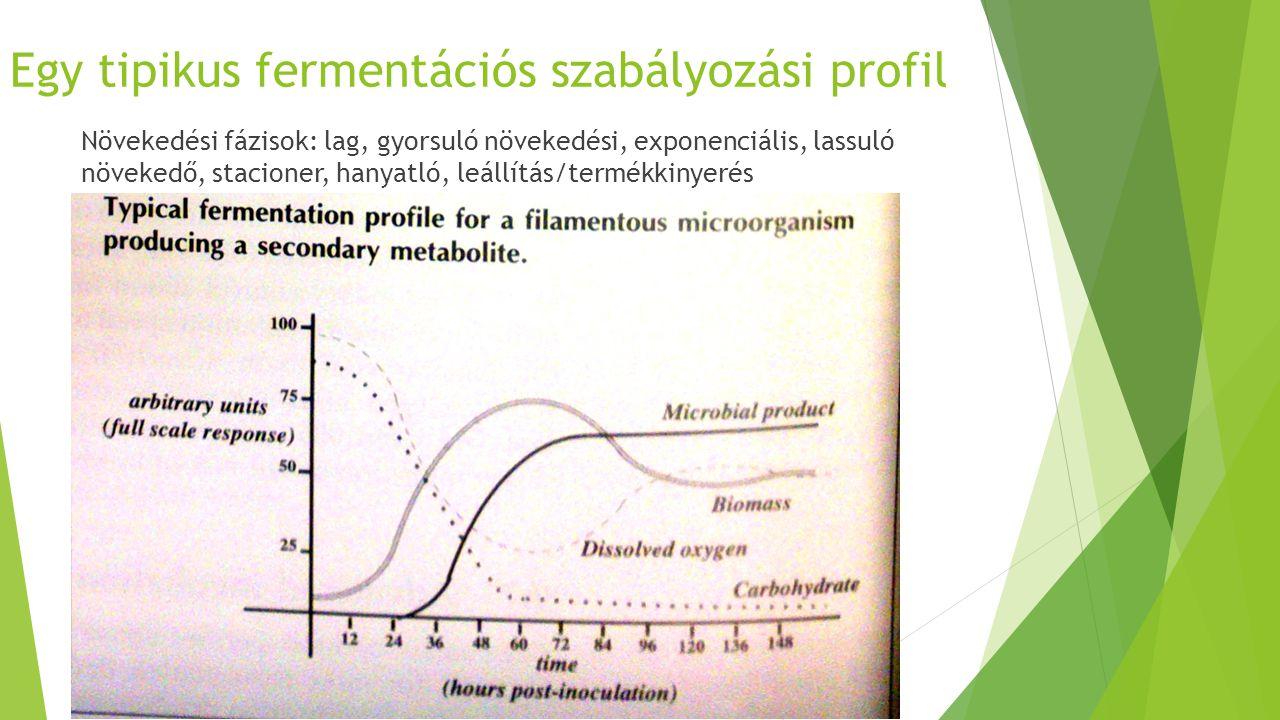 Egy tipikus fermentációs szabályozási profil