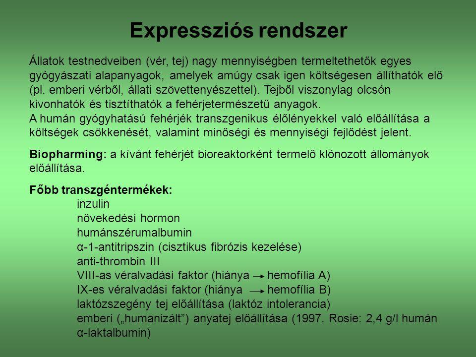 Expressziós rendszer
