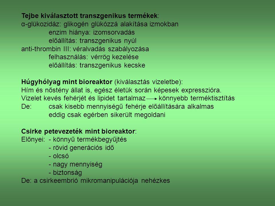 Tejbe kiválasztott transzgenikus termékek: