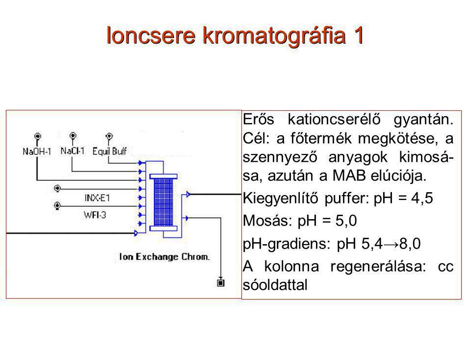 Ioncsere kromatográfia 1