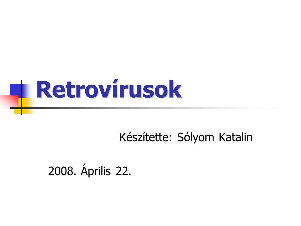 Készítette: Sólyom Katalin 2008. Április 22.