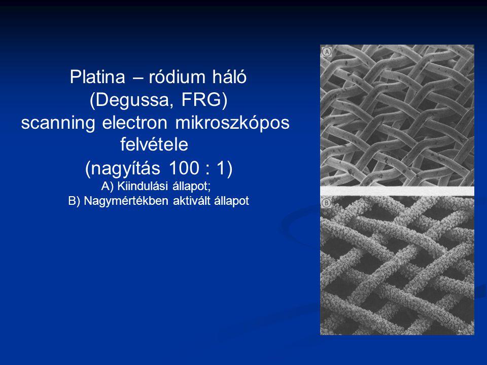 scanning electron mikroszkópos felvétele
