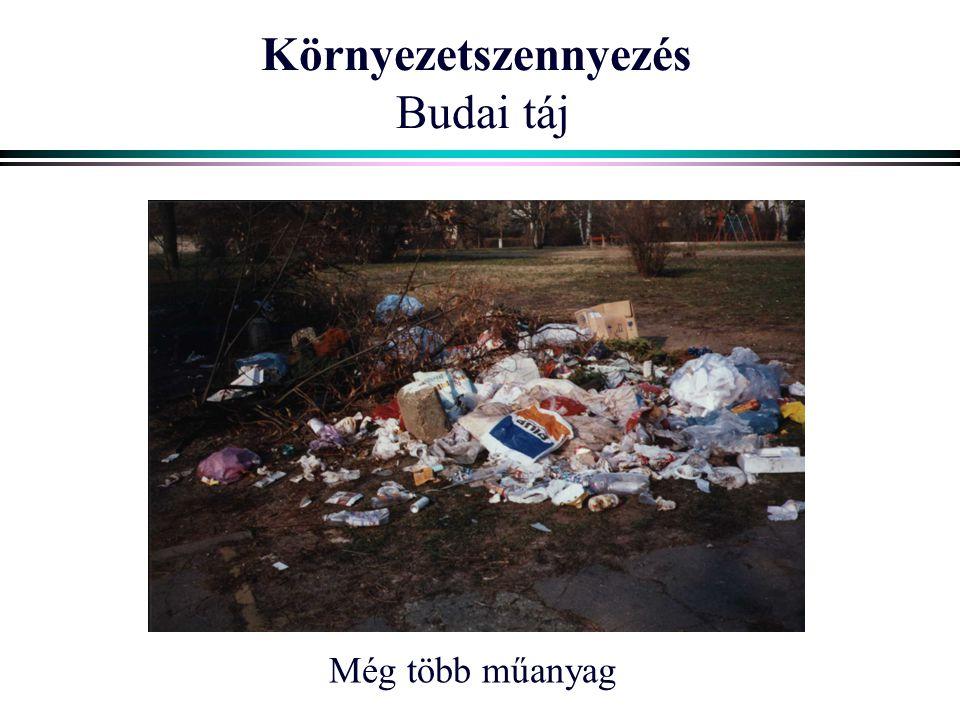 Környezetszennyezés Budai táj