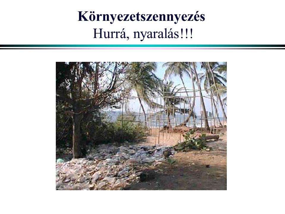 Környezetszennyezés Hurrá, nyaralás!!!
