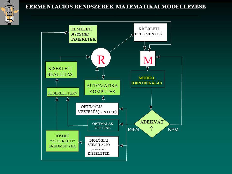 FERMENTÁCIÓS RENDSZEREK MATEMATIKAI MODELLEZÉSE
