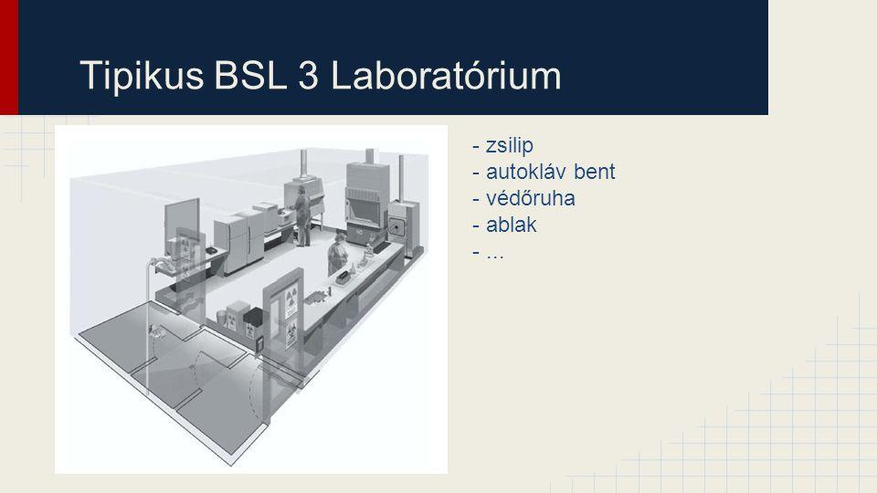 Tipikus BSL 3 Laboratórium