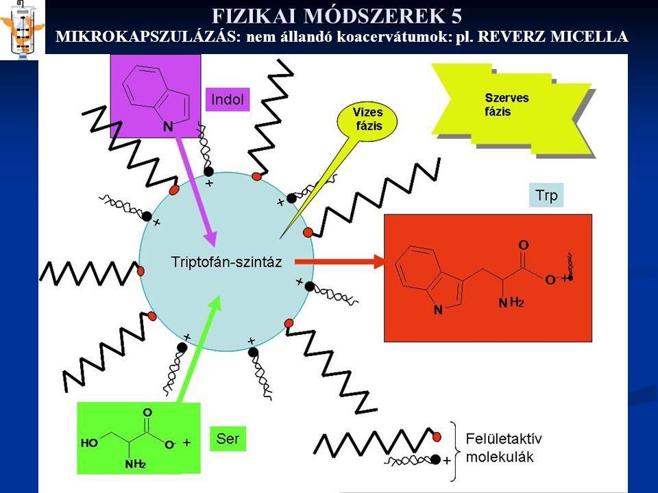 FIZIKAI MÓDSZEREK 5 MIKROKAPSZULÁZÁS: nem állandó koacervátumok: pl. REVERZ MICELLA