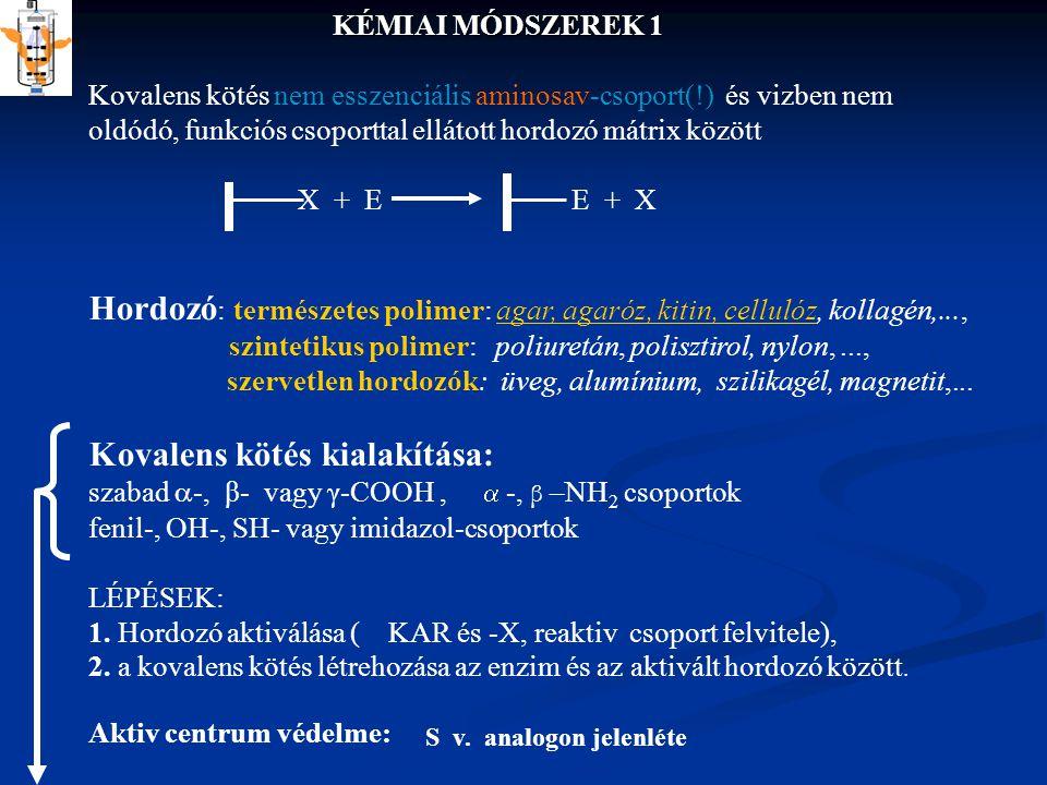 Kovalens kötés kialakítása: