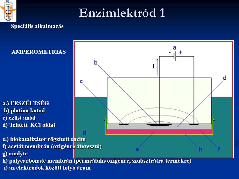 Enzimlektród 1 Speciális alkalmazás AMPEROMETRIÁS i a.) FESZÜLTSÉG