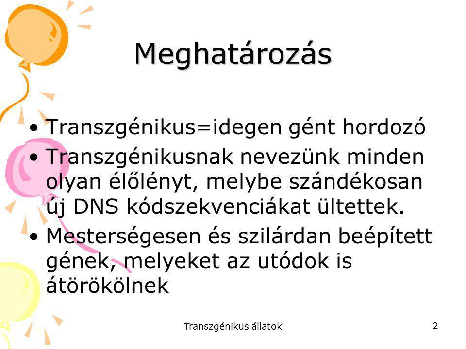 Transzgénikus állatok