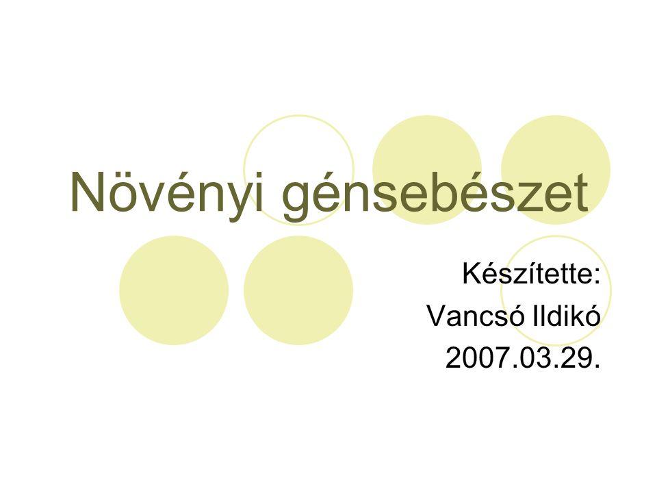 Készítette: Vancsó Ildikó 2007.03.29.