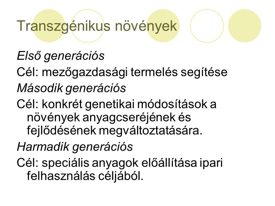 Transzgénikus növények