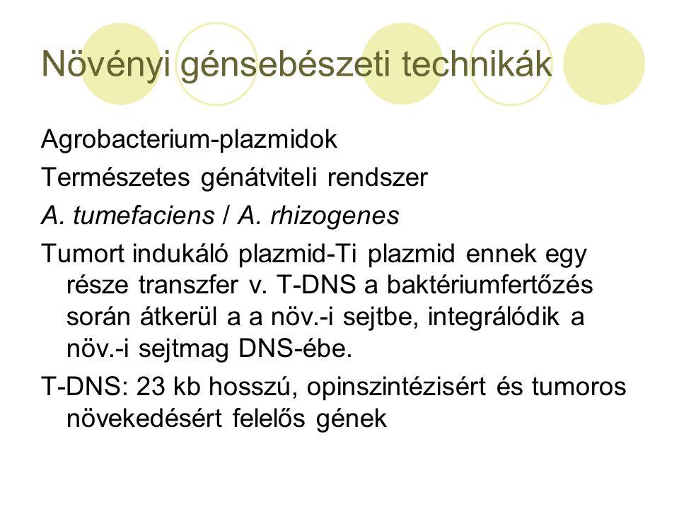 Növényi génsebészeti technikák