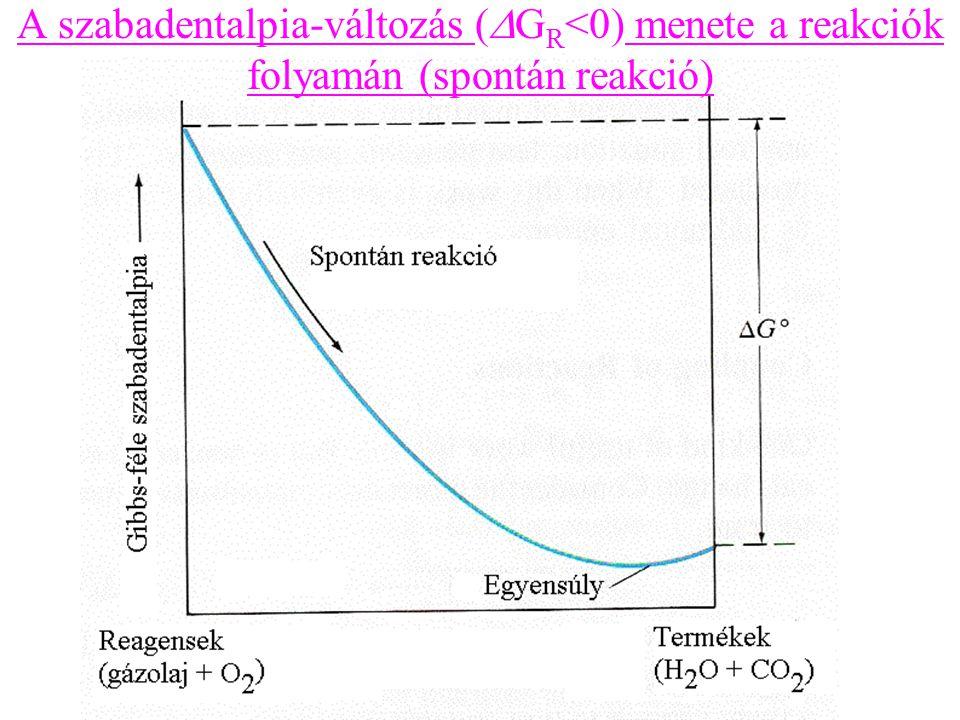 A szabadentalpia-változás (DGR<0) menete a reakciók folyamán (spontán reakció)