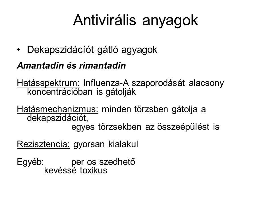 Antivirális anyagok Dekapszidácíót gátló agyagok