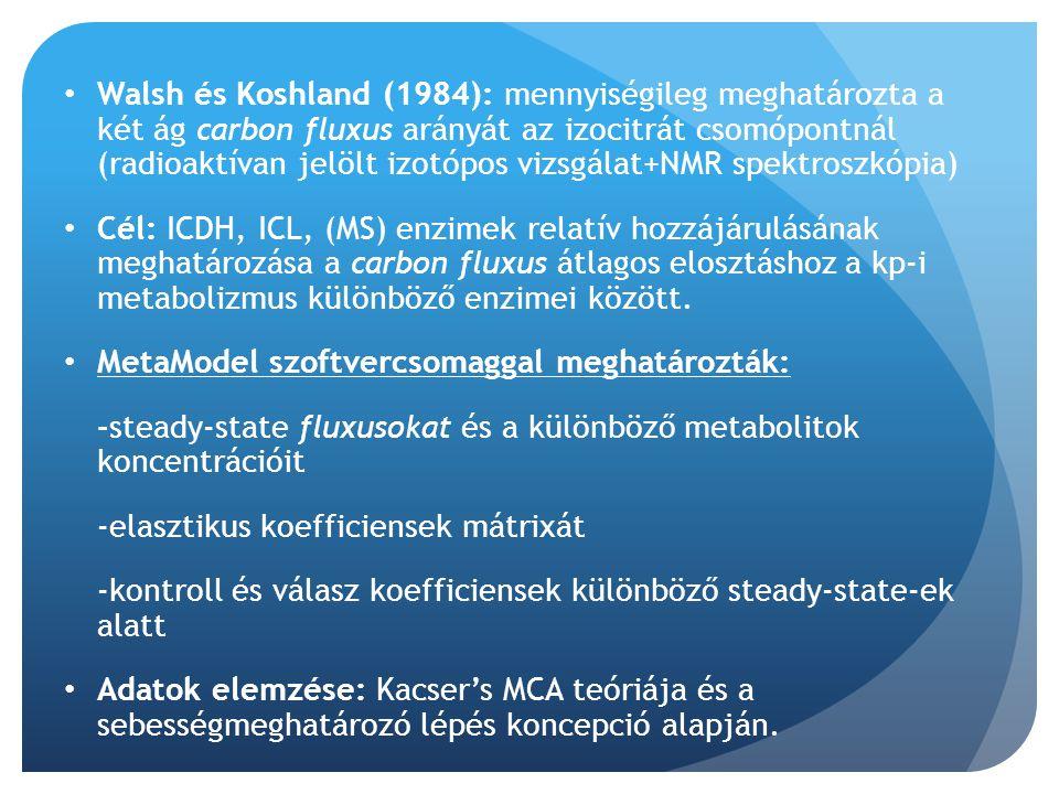 Walsh és Koshland (1984): mennyiségileg meghatározta a két ág carbon fluxus arányát az izocitrát csomópontnál (radioaktívan jelölt izotópos vizsgálat+NMR spektroszkópia)