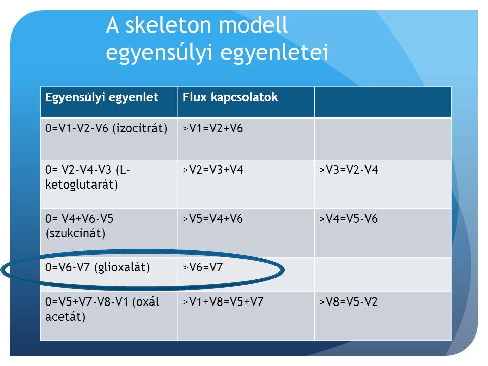 A skeleton modell egyensúlyi egyenletei