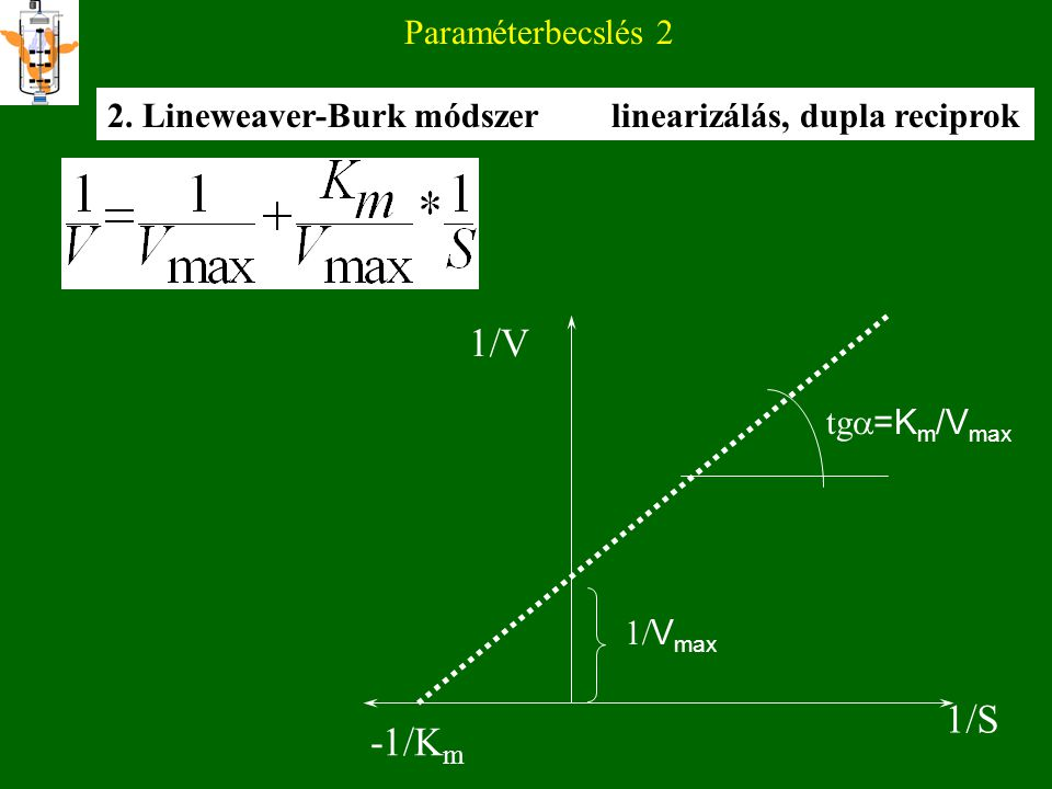 1/V 1/S -1/Km Paraméterbecslés 2