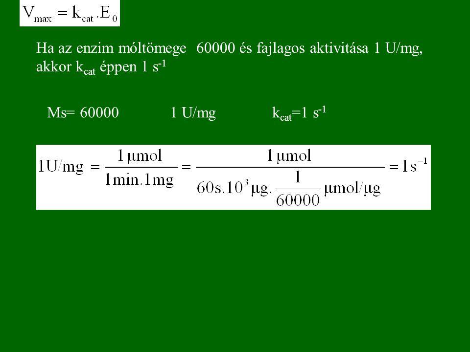 Ha az enzim móltömege 60000 és fajlagos aktivitása 1 U/mg, akkor kcat éppen 1 s-1