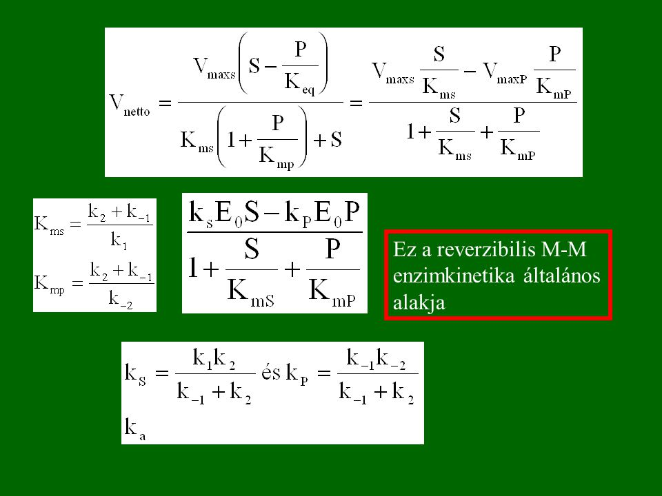 Ez a reverzibilis M-M enzimkinetika általános alakja
