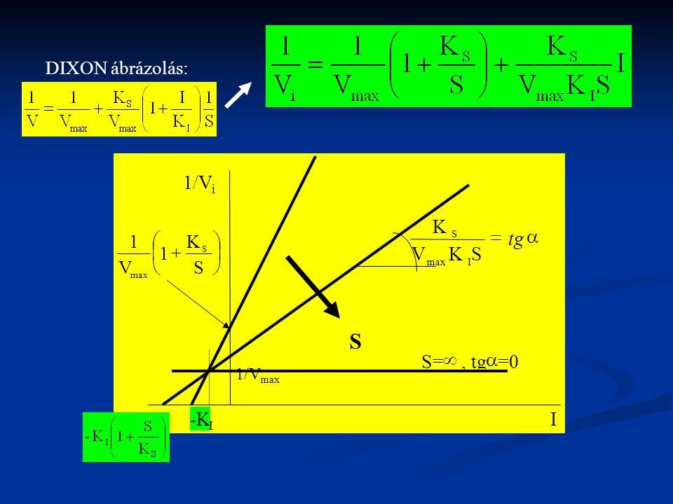 1/V I a = tg S= ¥ , tg =0 -K DIXON ábrázolás: ÷ ø ö ç è æ + S K 1 V