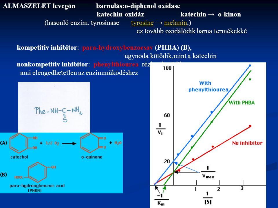 ALMASZELET levegőn barnulás:o-diphenol oxidase