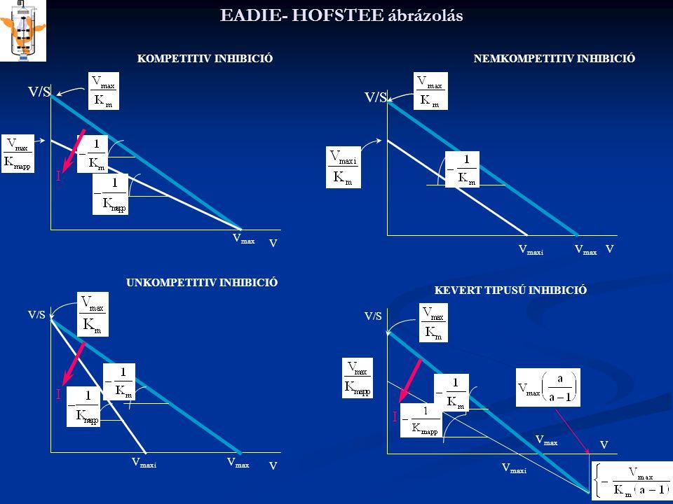 EADIE- HOFSTEE ábrázolás